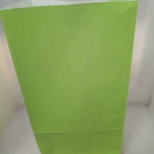 Lime green paper bags 10 per pack.